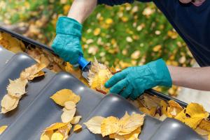 leaf-free gutter